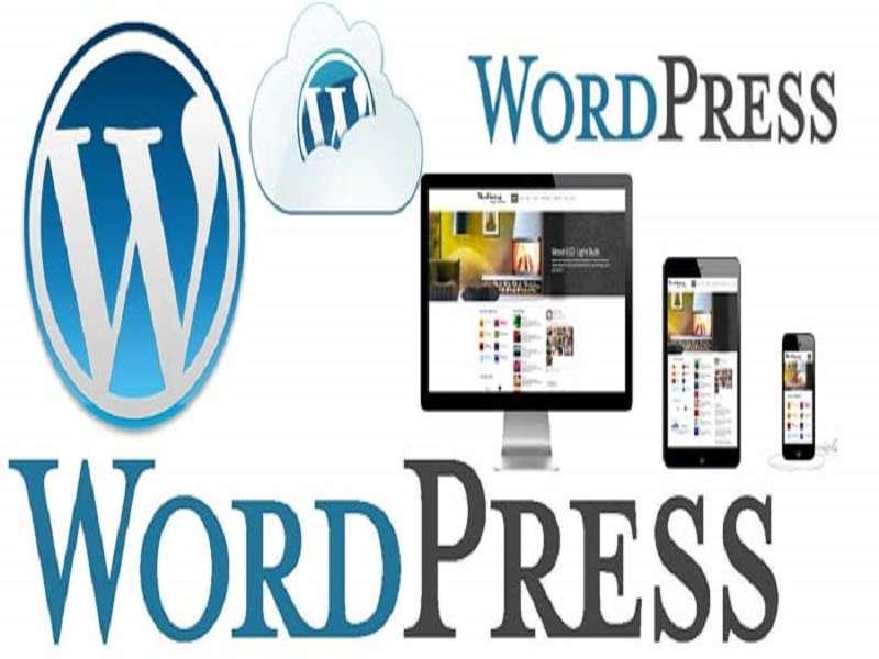 خدمات راه اندازی و طراحی انواع وب سایت با وردپرس